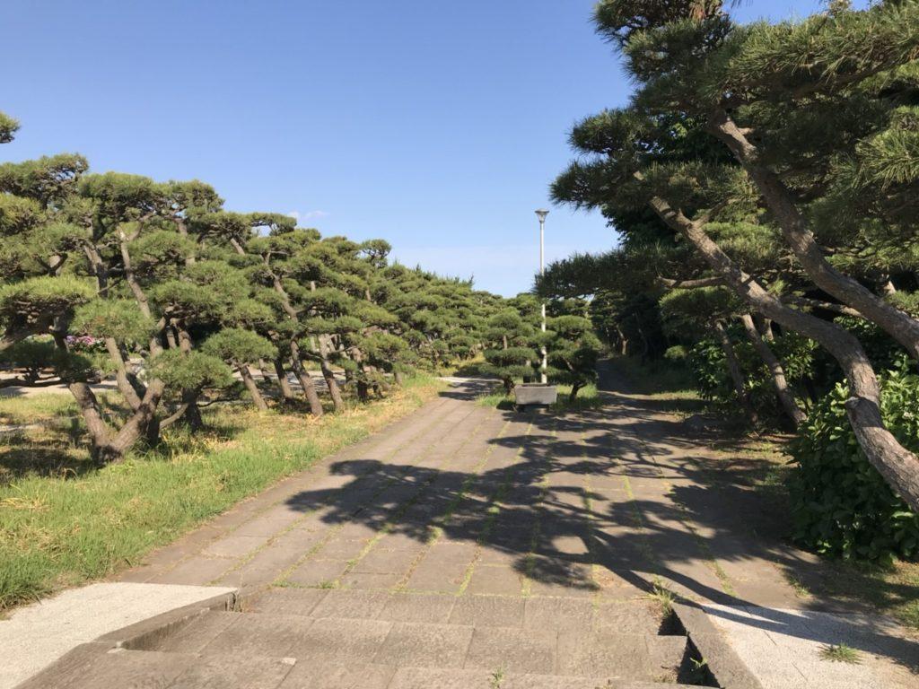 公園 城ヶ島